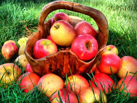 <a class=&quot;amazingslider-posttitle-link&quot; href=&quot;http://organiccenter.ir/news-and-events/production-apple-organic-by-farmer-semiromi/&quot;>تولید سیب ارگانیک توسط کشاورز نمونه سمیرمی</a>