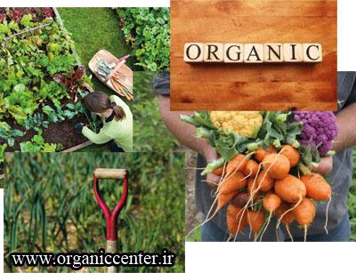 organic-pic2