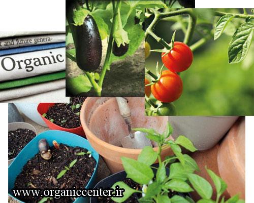 organicc-khnow